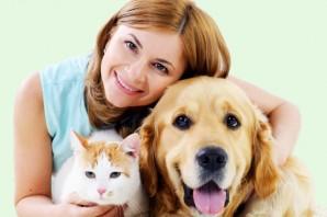 Wir kümmern uns um ihr Haustier