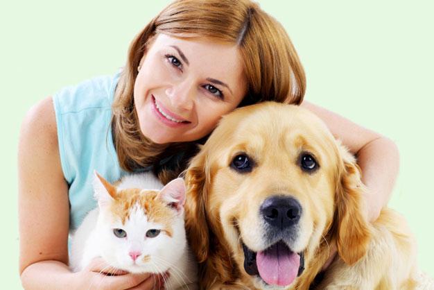 Wir kümmern uns um dein Haustier